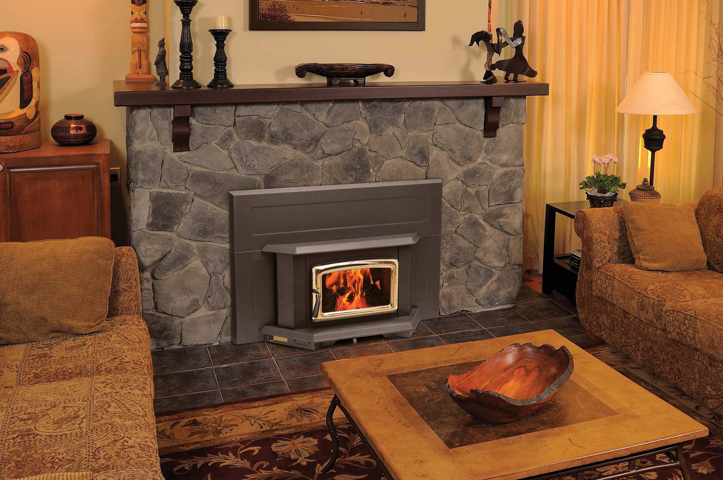Summit fireplace insert